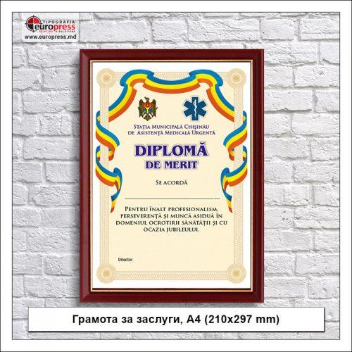 Грамота за заслуги А4 210x297 mm - разнообразие Грамот - типография Europress
