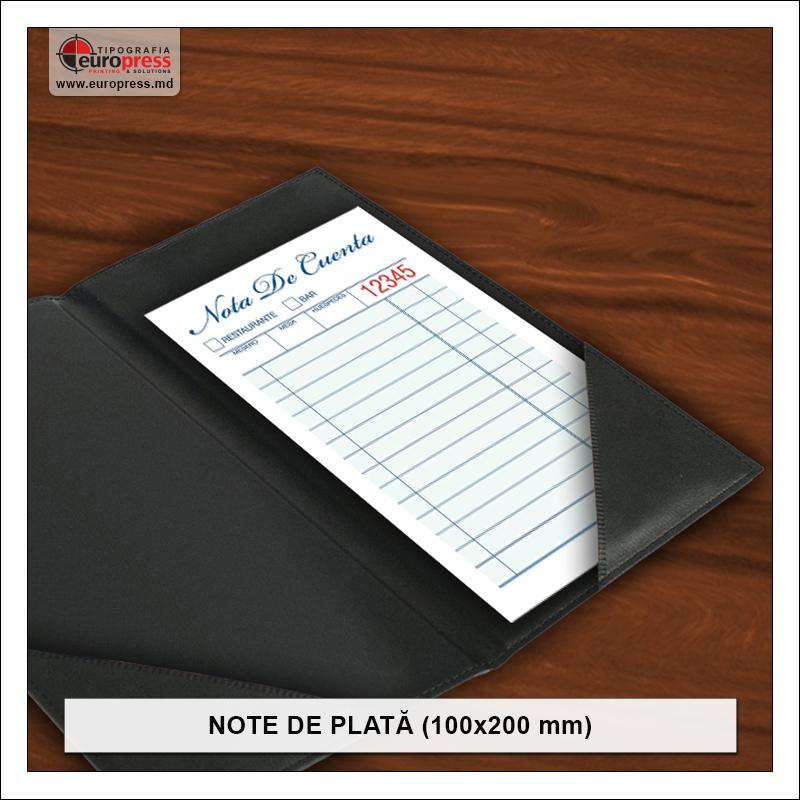 Nota de plata 100x200 mm - Varietate Note de Plata - Tipografia Europress