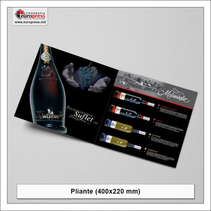 Pliant 400x220 mm - Varietate Pliante - Tipografia Europress