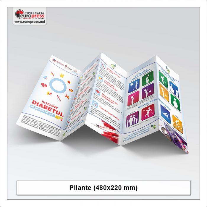 Pliant 480x220 mm - Varietate Pliante - Tipografia Europress