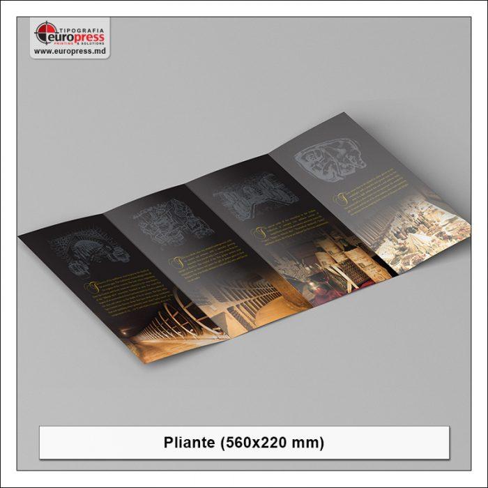 Pliant 560x220 mm - Varietate Pliante - Tipografia Europress