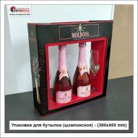 Упаковки для бутылок шампанское 380x400 mm - Разнообразие Упаковок - Типография Europress
