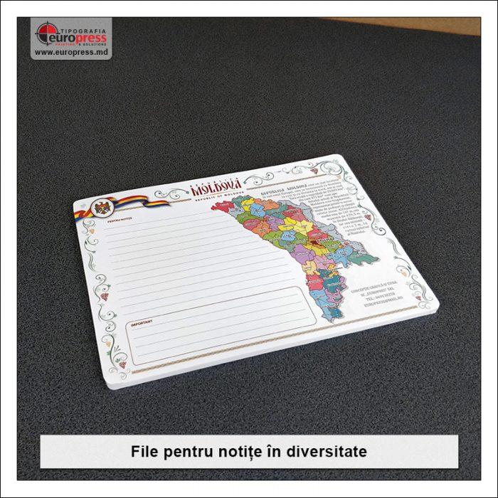 File pentru notite - Varietate Rechizite de Birou - Tipografia Europress